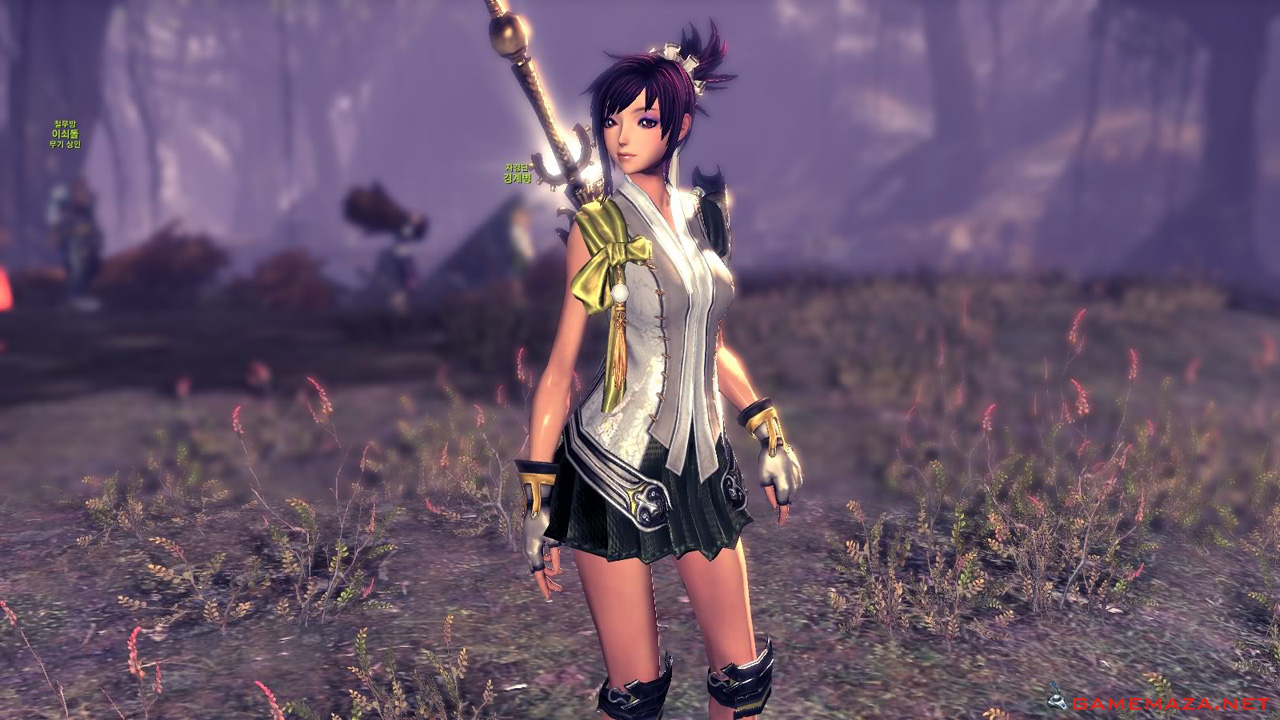 Blade and Soul, Blade and Soul Gold, BnS Gold, Guides, NCSoft, Opinion, Tips 1, stats, pvp, pve, skill, rating, ladder, season 2